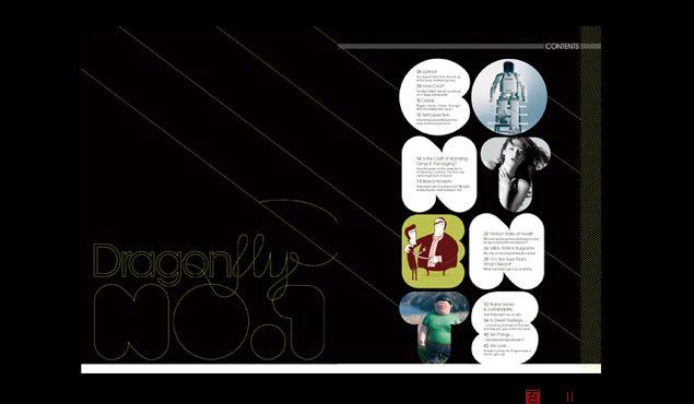 设计类杂志dragonfly时尚版面设计
